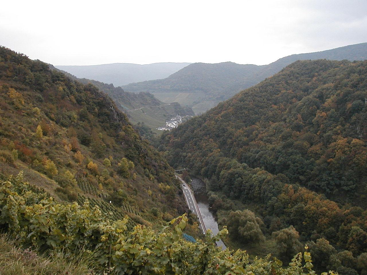 Ahrtal (Foto: Ralfk, Wikipedia)
